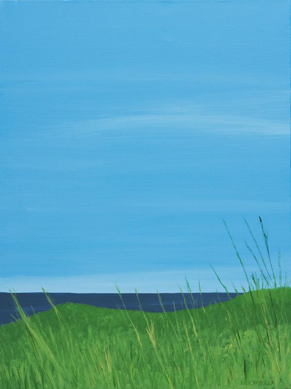 Grassy Glimpse